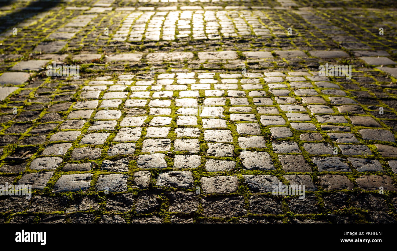 Stone footpath with moss in the morning sunlight. Fairy, magic, mystical background - Stock Image