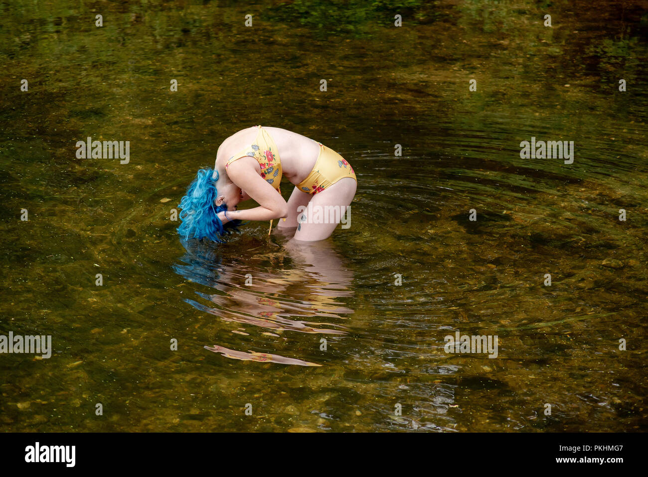A blue haired woman standing in a river bends over to wet her hair - Stock Image