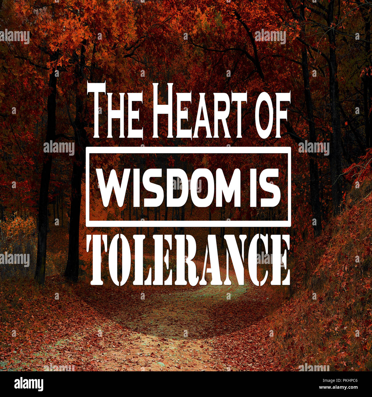 inspirational quotes the heart of wisdom is tolerance positive