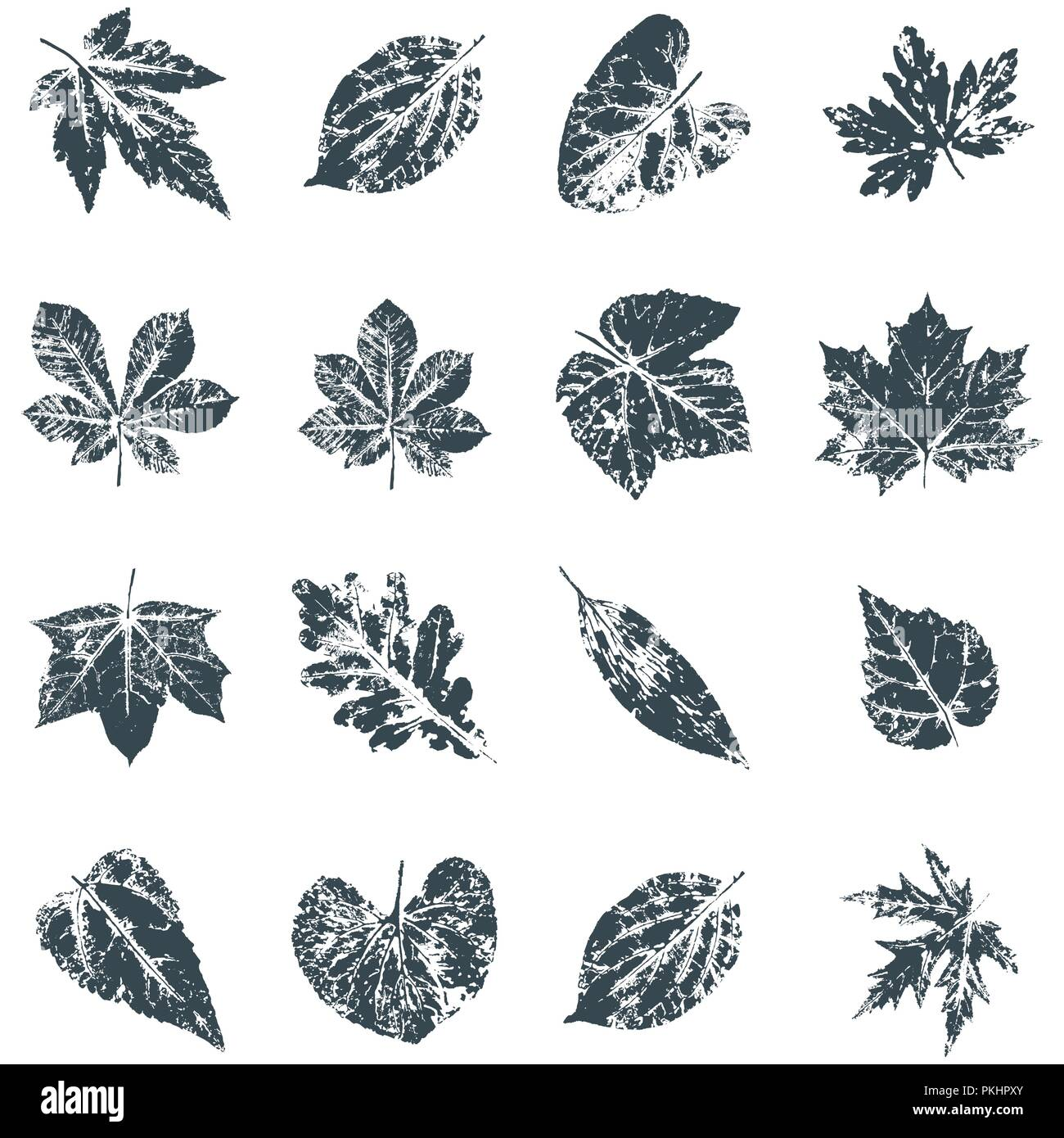 Vector Leaf Print Inkprinted Leaves Of The Trees On Paper Stock