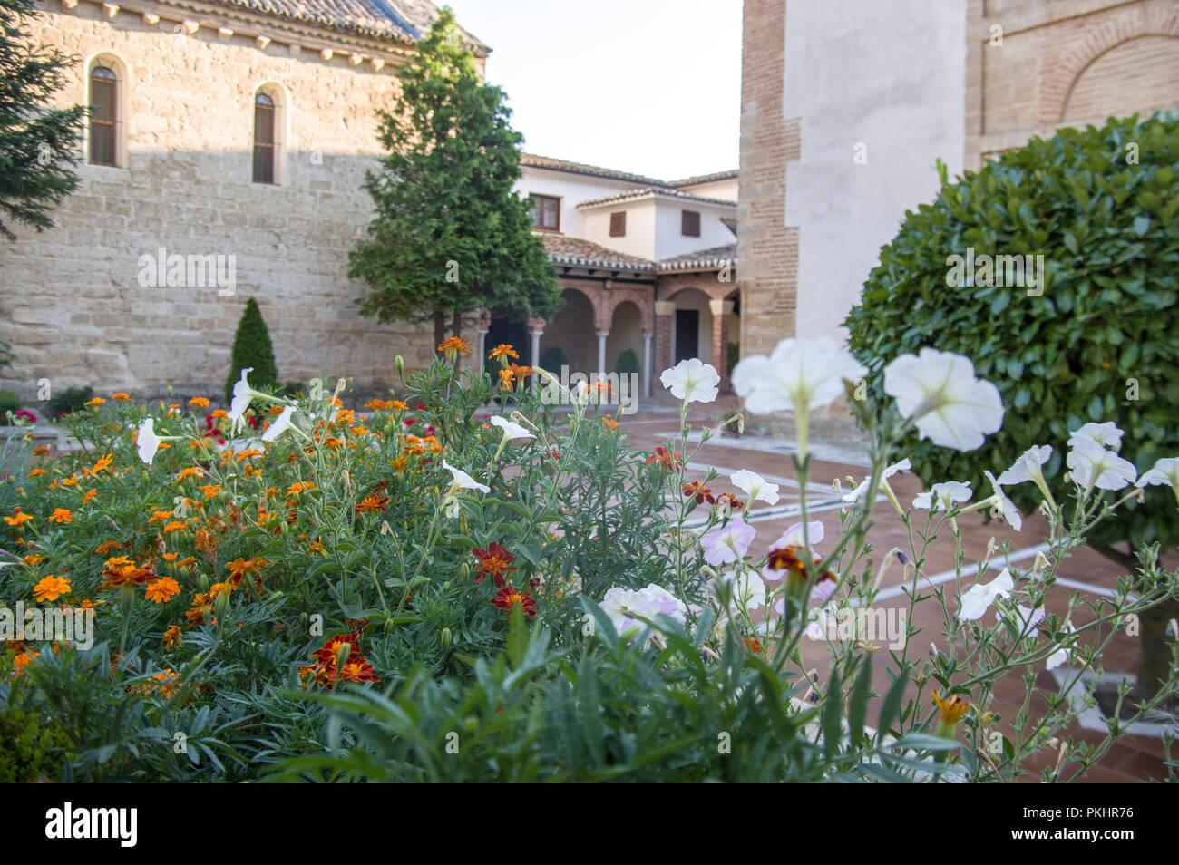 Flowers in the convent of Santa Clara, Astudillo. Palencia province, Castilla-León, Spain - Stock Image