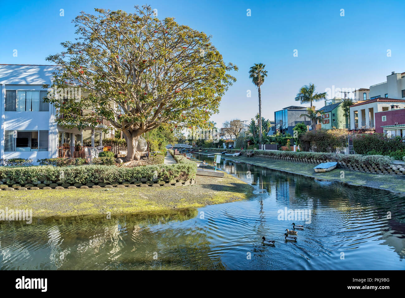 Venice canals in Los Angeles, California - Stock Image