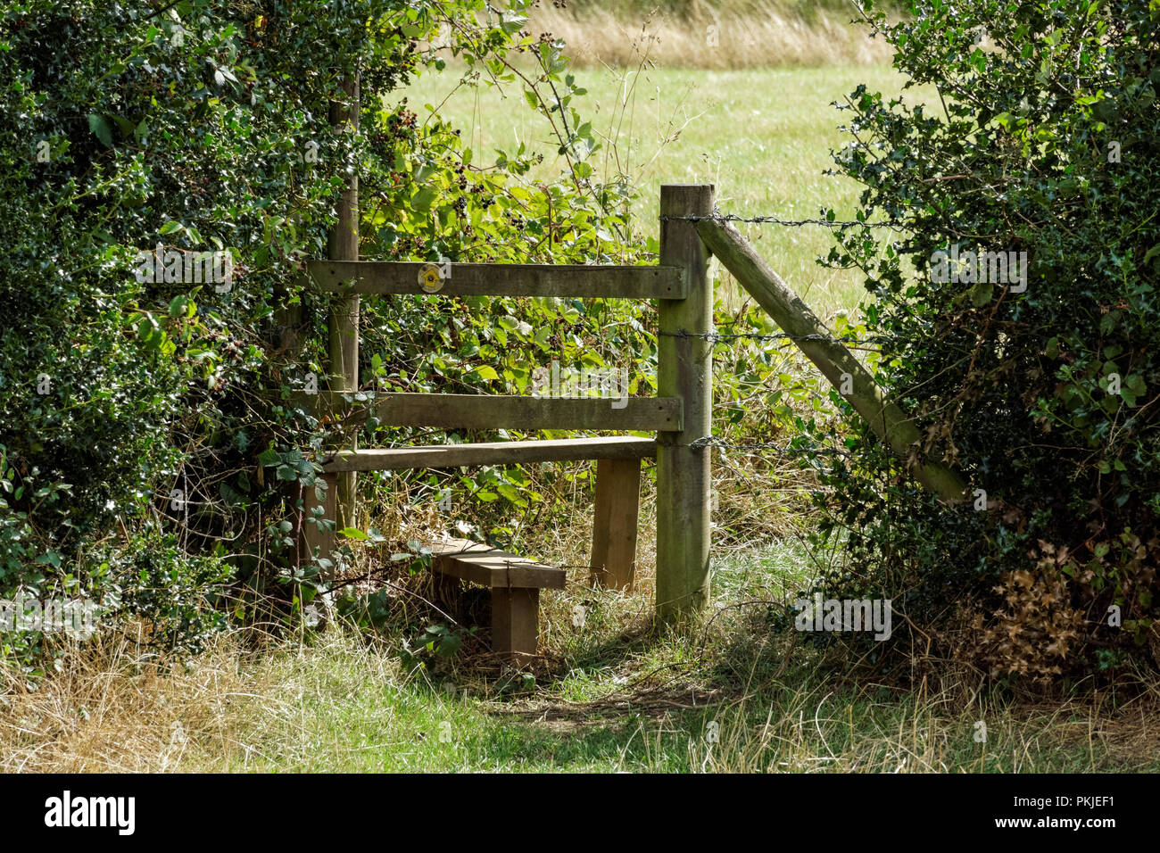 A stile in the Chiltern Hills, Buckinghamshire, England United Kingdom UK - Stock Image