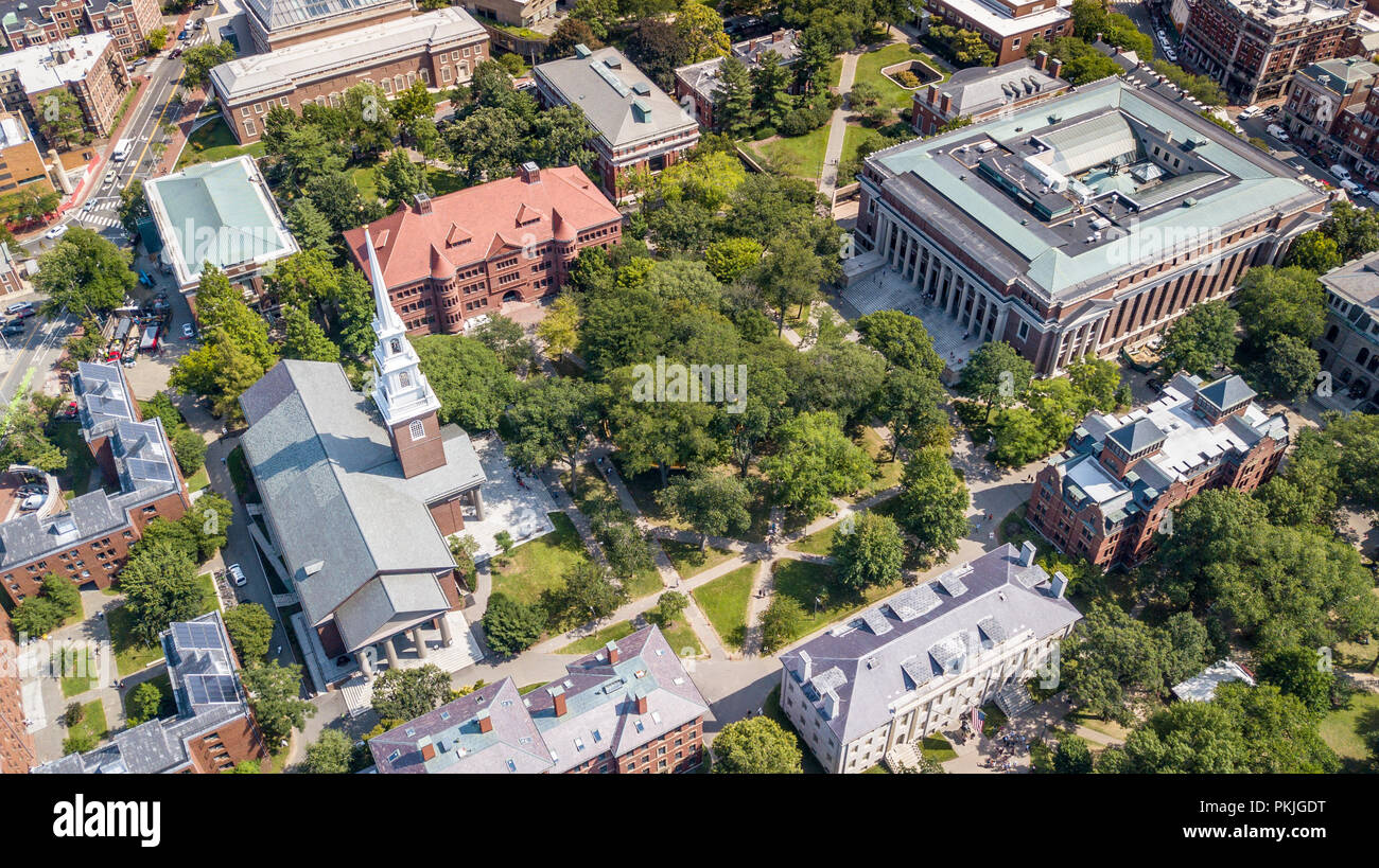 Harvard Yard, Grossman Library, Widener Library and Memorial Church, Harvard University, Boston, MA, USA - Stock Image
