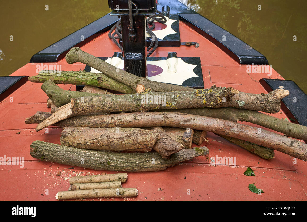 Collecting fallen wood in the summer is an easy way to stock up on wood for winter if you are on a narrowboat - Stock Image