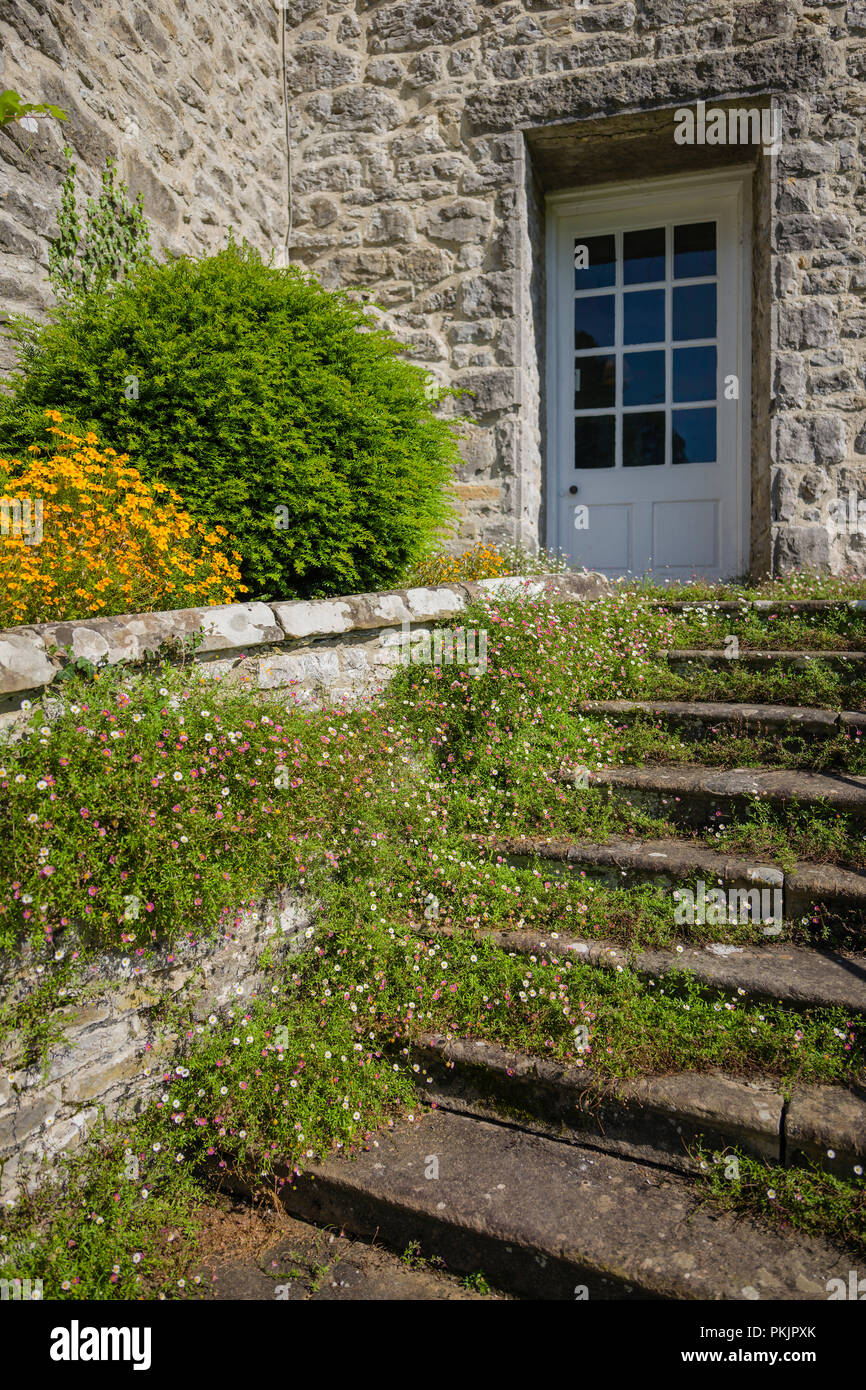 Garden steps leading to a doorway - Stock Image