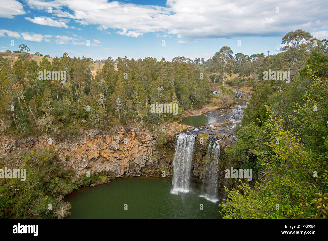 Spectacular Dangar Falls on Bellinger River pouring over rocky cliffs hemmed with forests and splashing into emerald pool near Dorrigo, NSW Australia - Stock Image