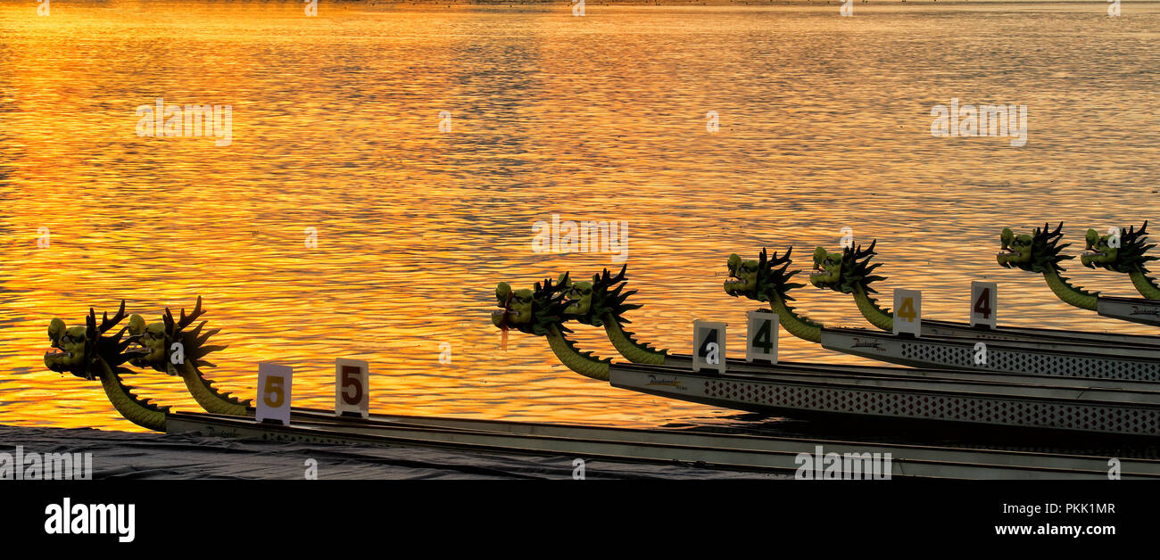 The pearl river in guangzhou, guangdong province, the dragon boat - Stock Image