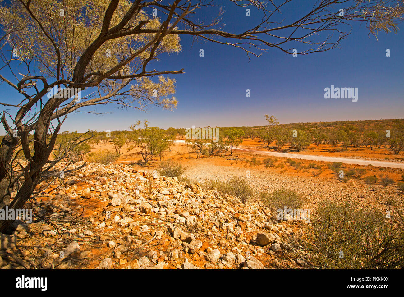 View from stony hill of Australian outback landscape with road slicing across plains, dotted with trees, that stretch to horizon under blue sky in Qld Stock Photo