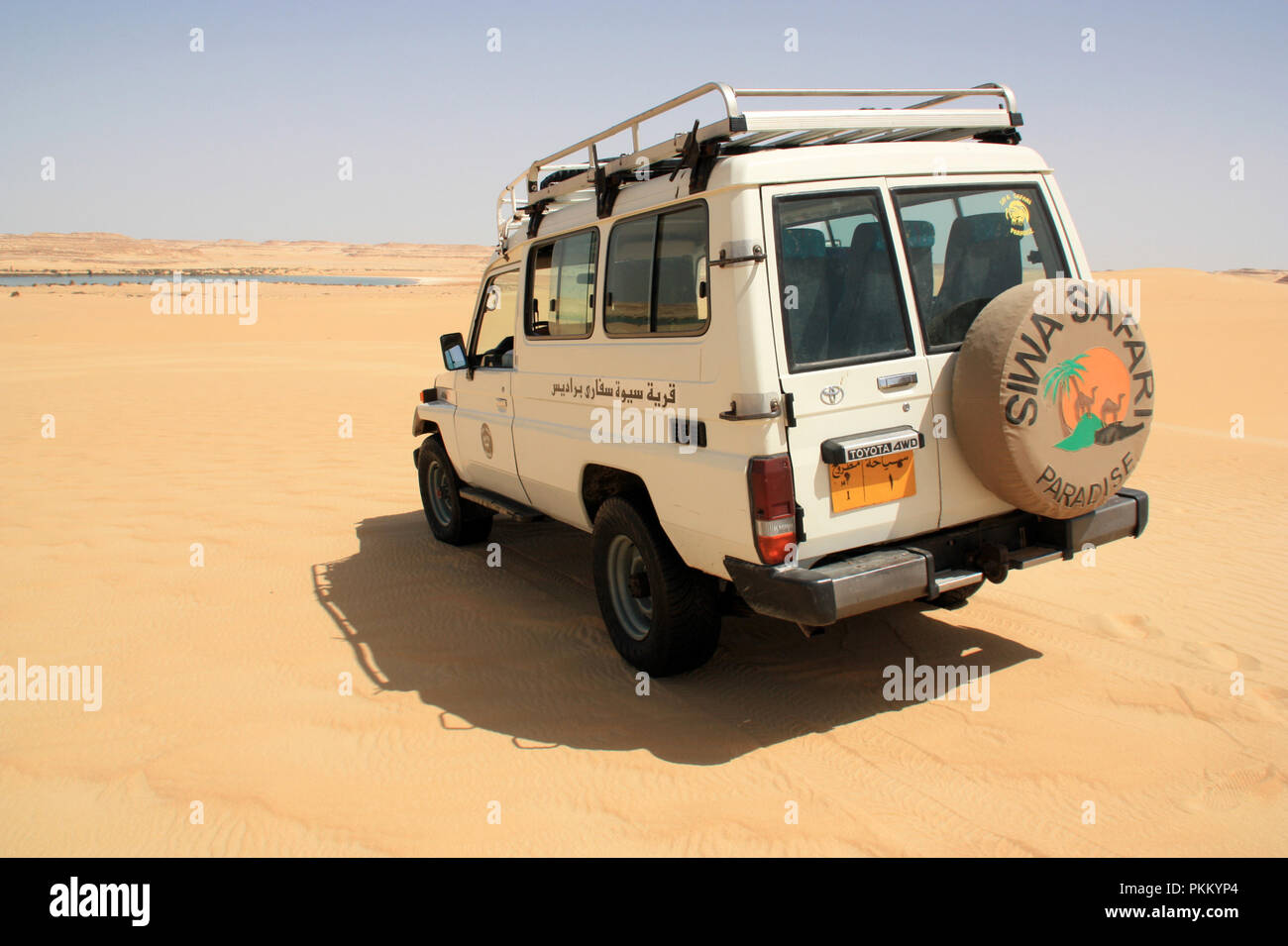 Off-road vehicle heading towards a oasis near the Libyan boarder - Stock Image