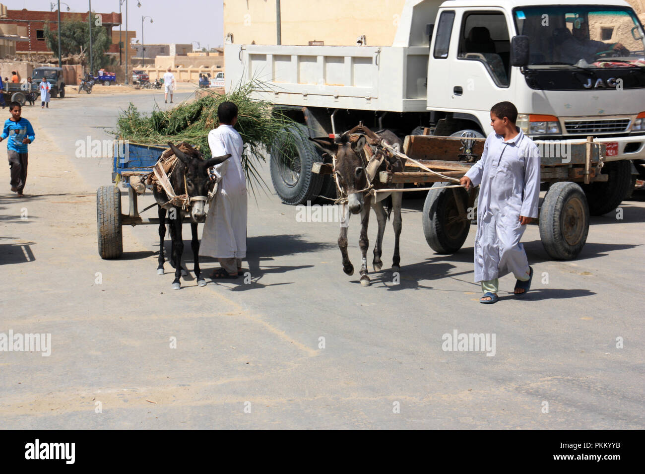 Two young teenagers guiding their donkeys through the traffic across the street in Siwa, Siwa Oasis, Egypt - Stock Image