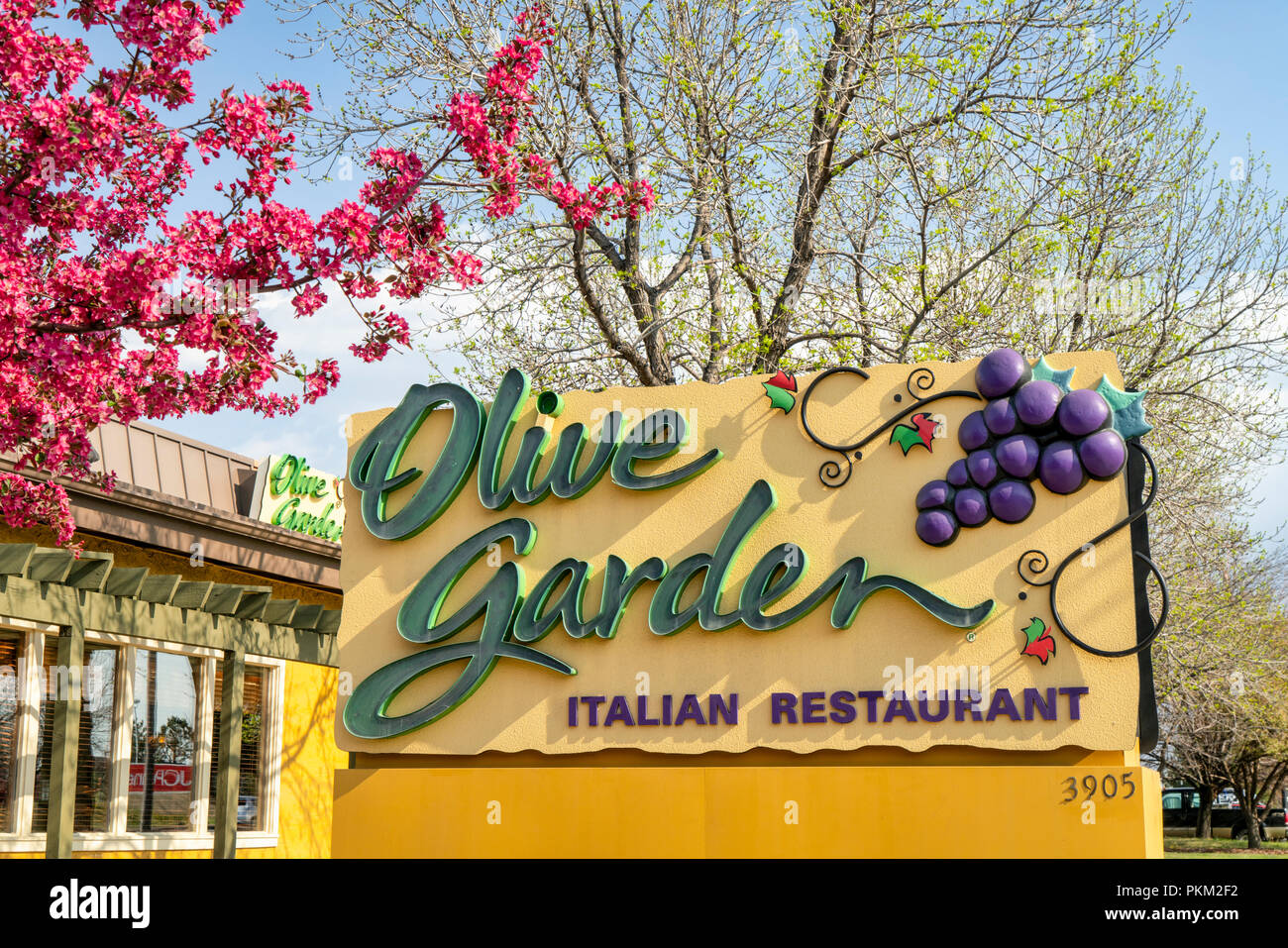 fort collins co usa april 30 2018 olive garden lively family friendly chain featuring italian standards such as pastas salads with a full b - Olive Garden Fort Collins