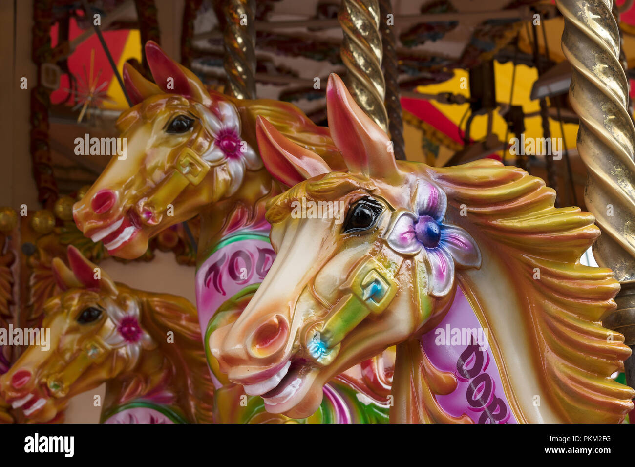 Carousel Horse Head Horses Heads Detail Fairground Merry Go