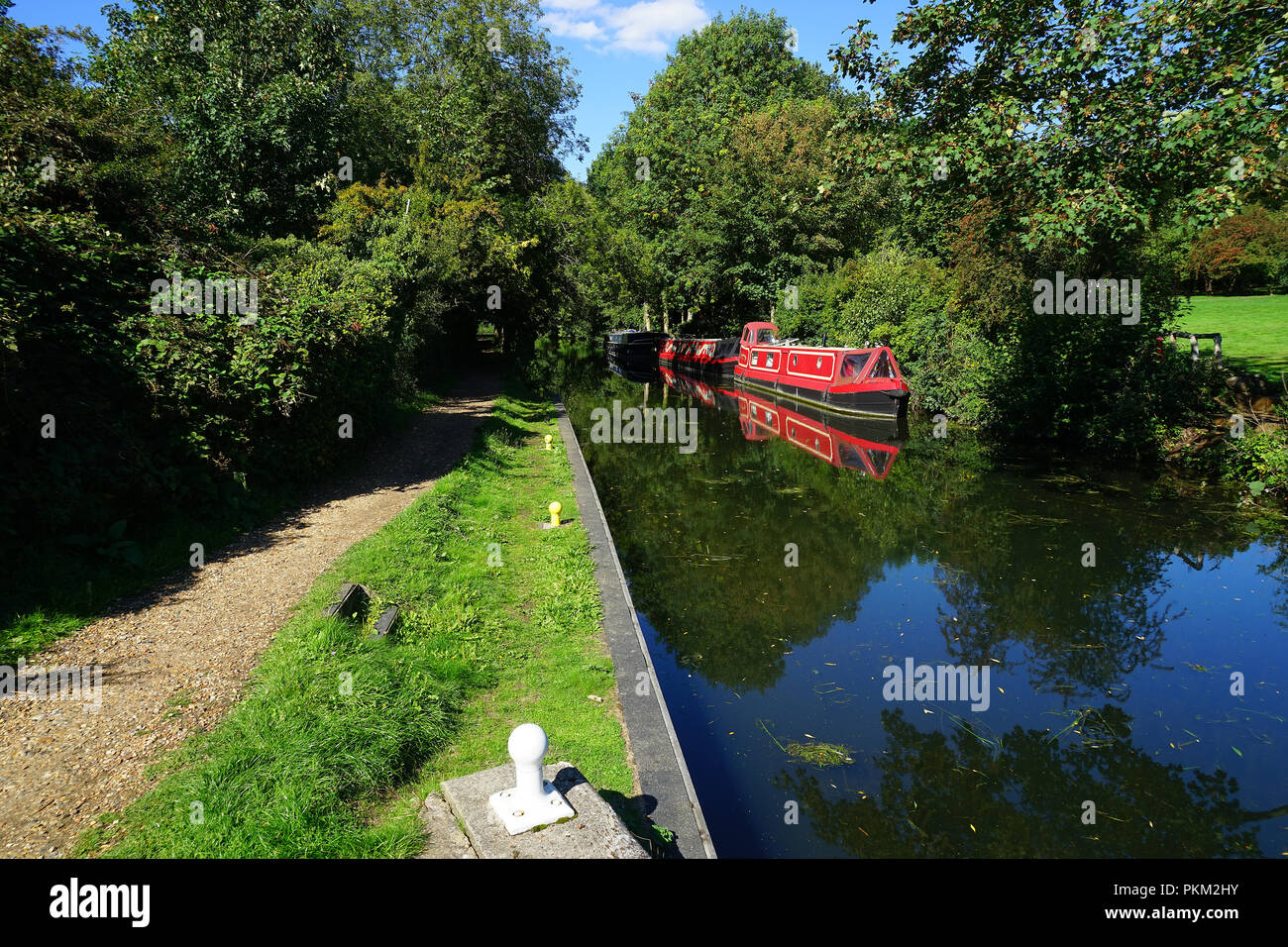 A view from the tow path on the Stort Navigation Stock Photo
