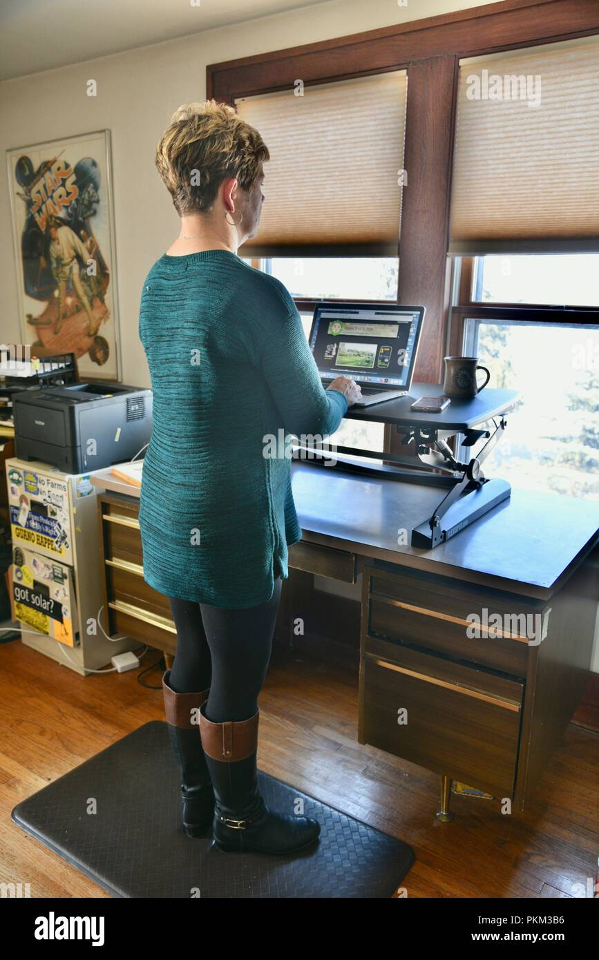 Middle-age business woman standing and working on Apple MacBook Pro using FlexiSpot/Loctek ergonomic Standing Desk at home office, Browntown, WI, USA - Stock Image