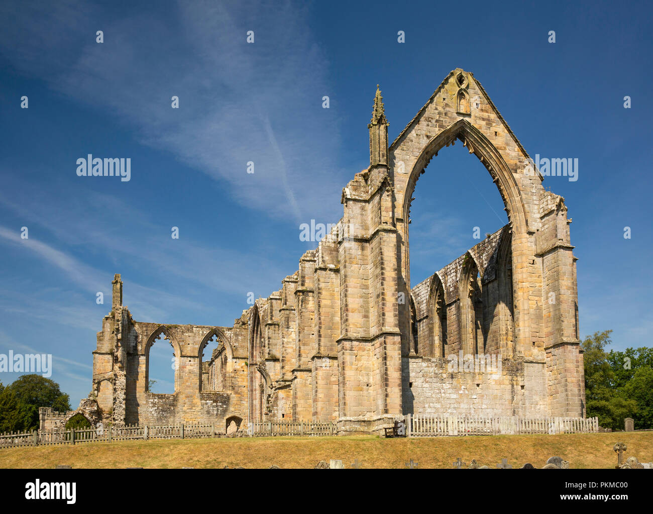UK, Yorkshire, Wharfedale, Bolton Abbey, ruins of 1154 Augustinian Priory - Stock Image