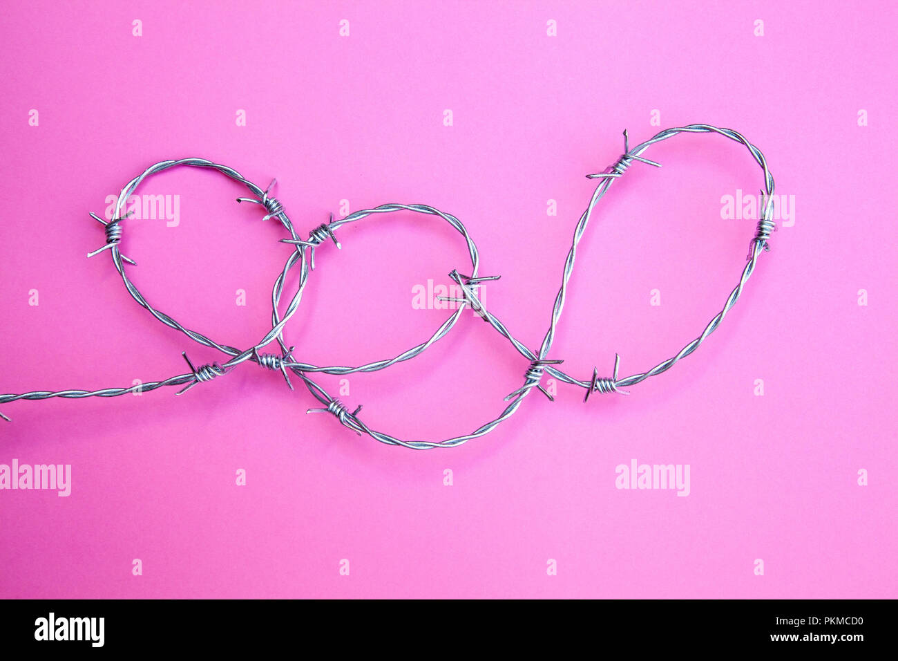 Barb Wire Loops on Pink Ground - Stock Image