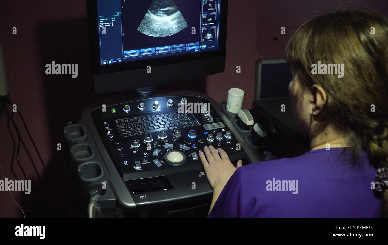 Doctor does an ultrasound examination. Ultrasound diagnostics with the image of internal organs on the screen of the monitor in a veterinary clinic. Medical ultrasound machine. Screen ultrasound machine. symbol diagnostics in healthcare. - Stock Image