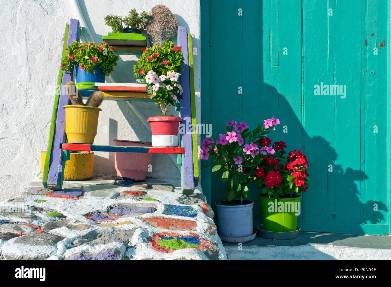 Milos, Klima village, Greece,09/13/2012: flowers in Klima village - Stock Image