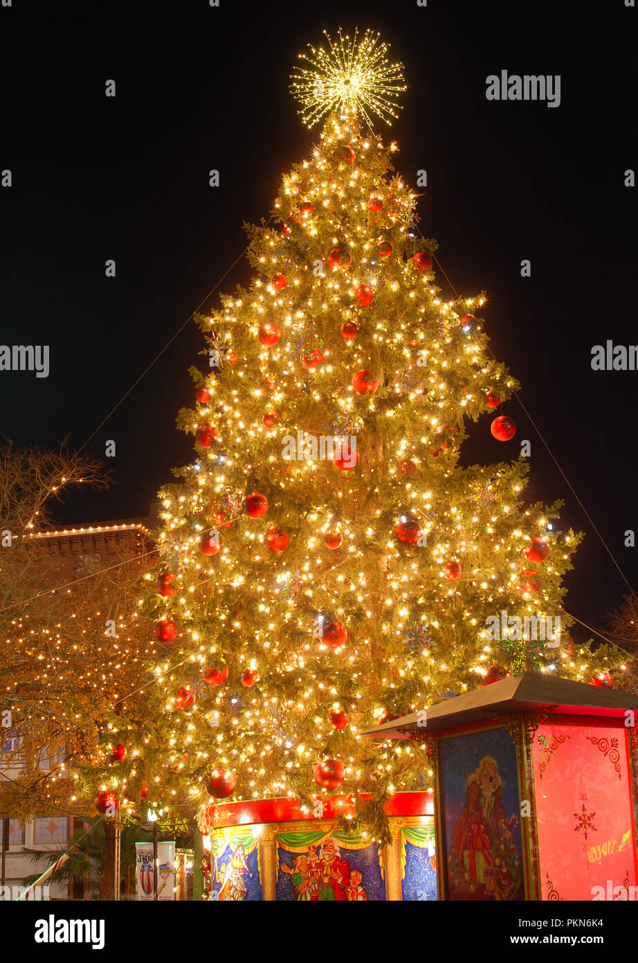Large Outdoor Christmas Decorations.Large Outdoor Christmas Tree At Night Time Stock Photo