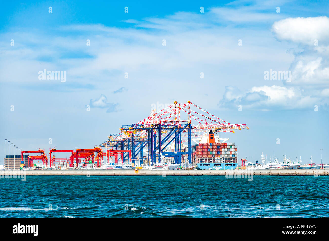 Cranes and container ships in the port of Cape Town, South Africa - Stock Image