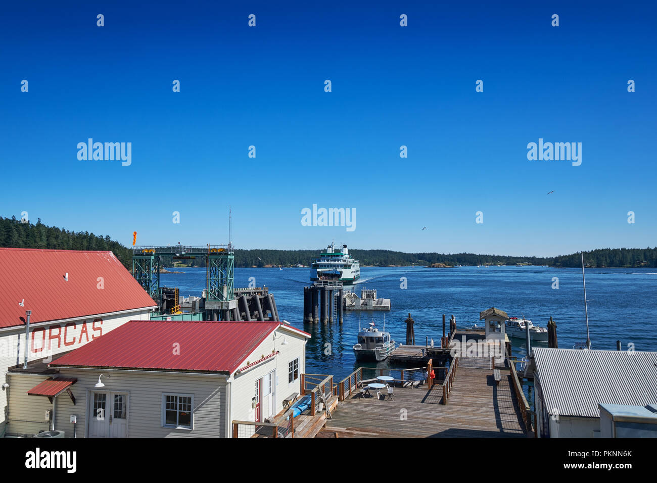 Washington State Ferry approaching the ferry terminal on Orcas Island, San Juan Islands - Stock Image