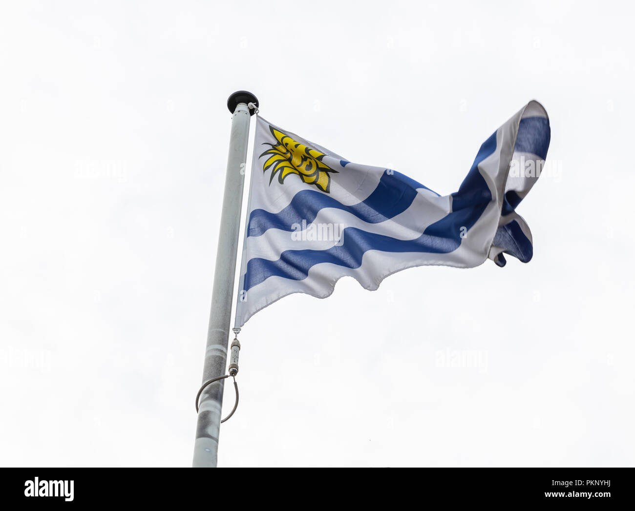 Uruguay flag on a pole waving on cloudy sky background - Stock Image