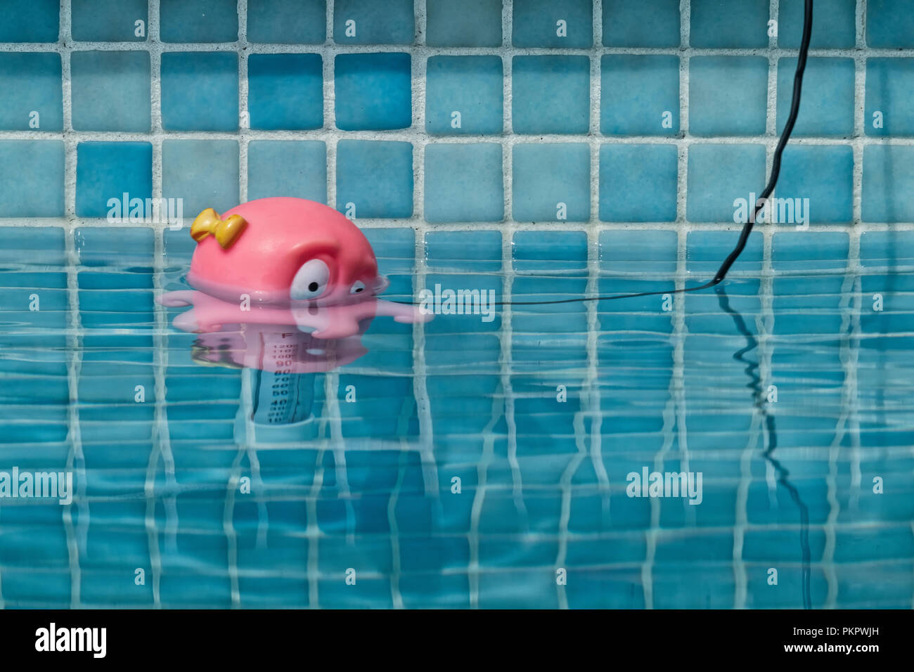 Swimming pool thermometer with octopus head Stock Photo ...