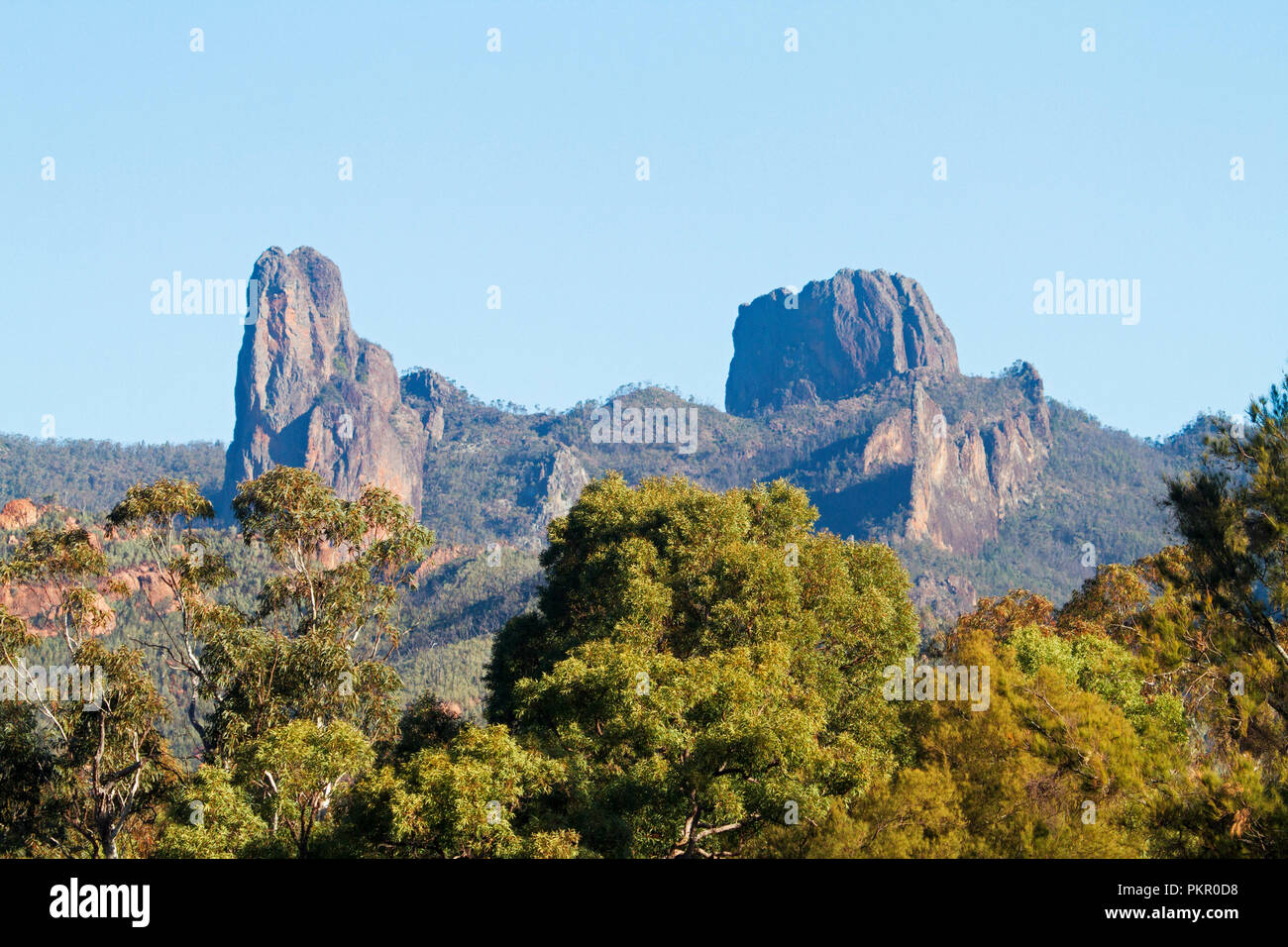 Jagged rocky outcrops rising above forested ranges into blue sky in Warrumbungle National Park NSW Australia - Stock Image