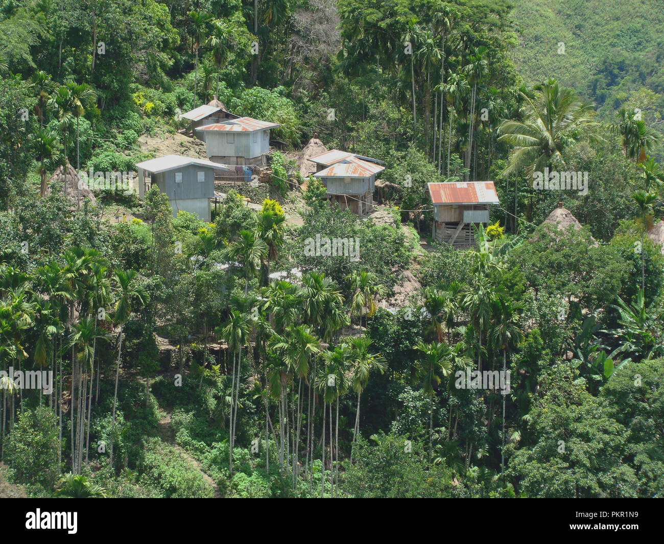 Sustainable Development Goals: forested mountains and terraced paddy fields in the mountains around Banaue and Batad, northern Luzón, The Philippines Stock Photo