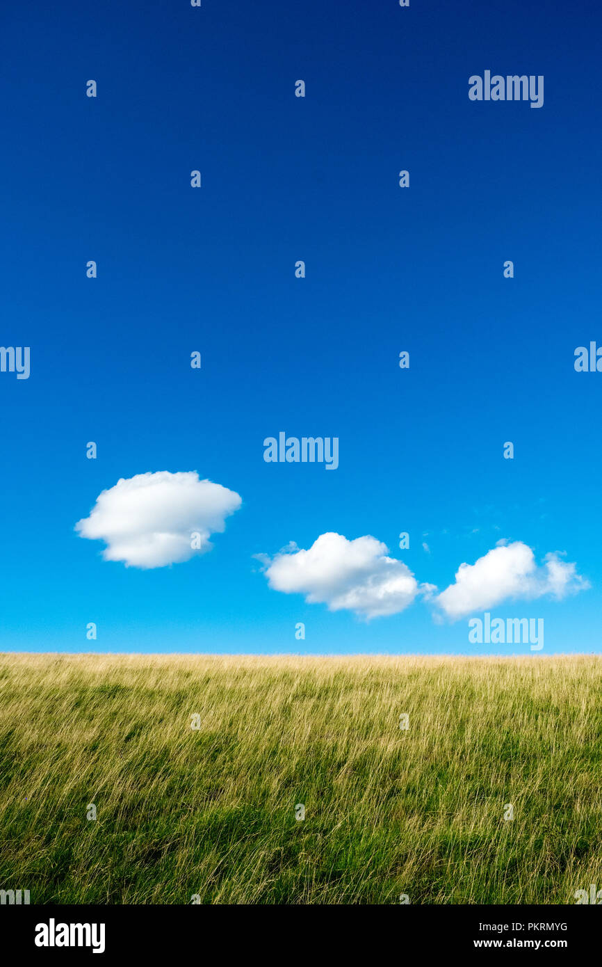 Blue sky and white ,fluffy clouds above grassy field, Peak District National Park Stock Photo
