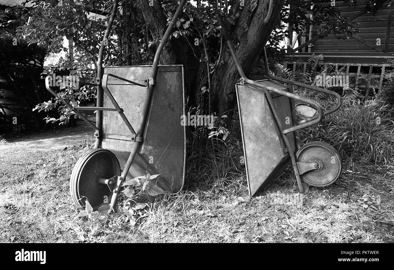 Old wheelbarrows in Garden, Black and white - Stock Image