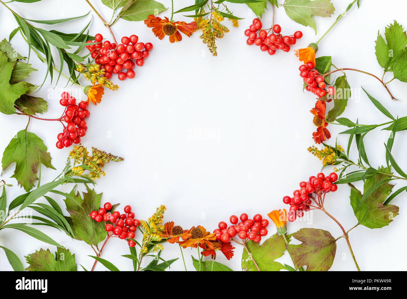 Autumn Floral Composition Frame Made Of Viburnum Berries