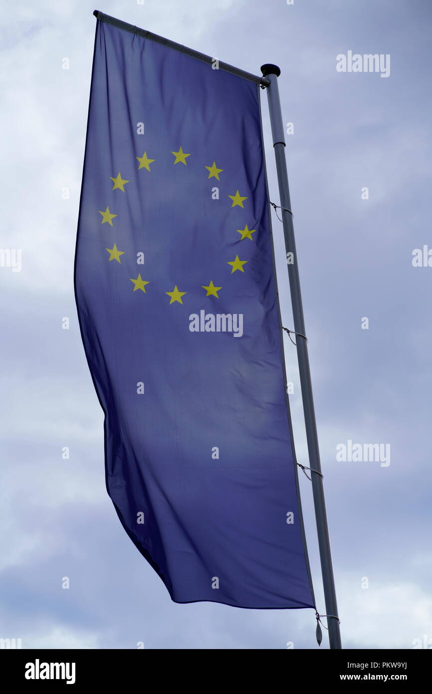 Flag of Europe, Flag of the European Union and the Council of Europe - Stock Image