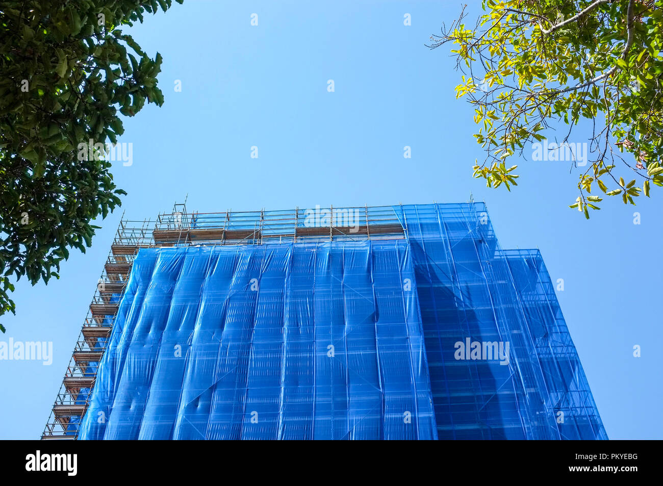 blue scaffolding over a building. - Stock Image