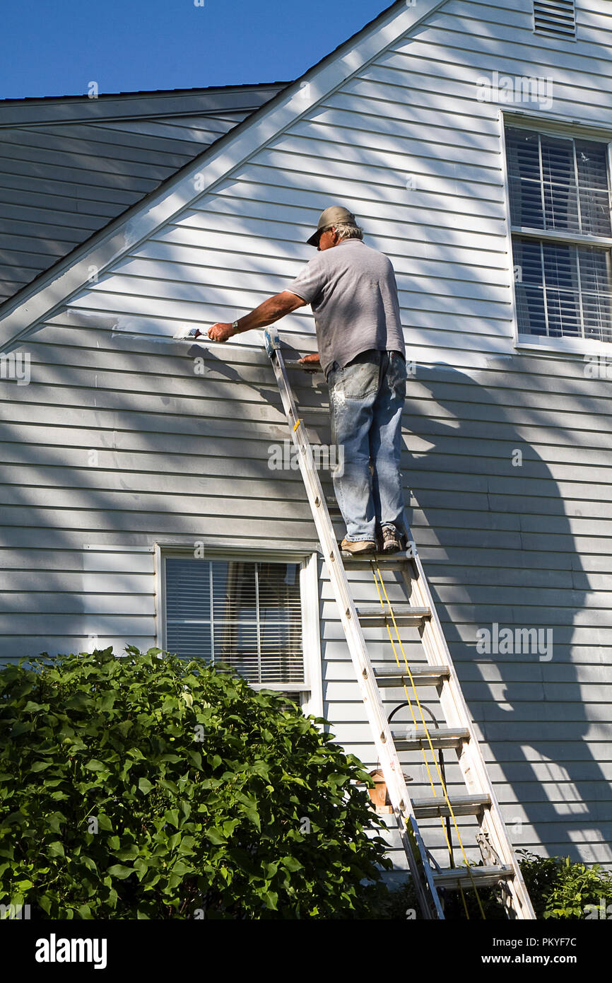 Stupendous Senior Citizen Male Painting House Exterior On Ladder His Download Free Architecture Designs Ferenbritishbridgeorg