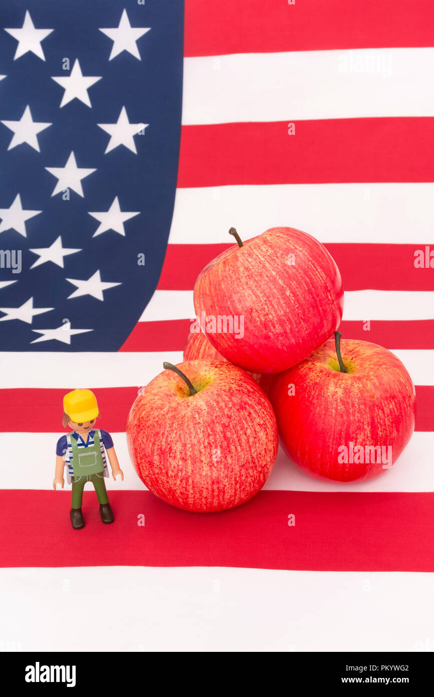 Red apples + U.S American flag / Stars and Stripes - metaphor US apple industry, Chinese trade tariffs on imports of American apples. Small toy farmer - Stock Image