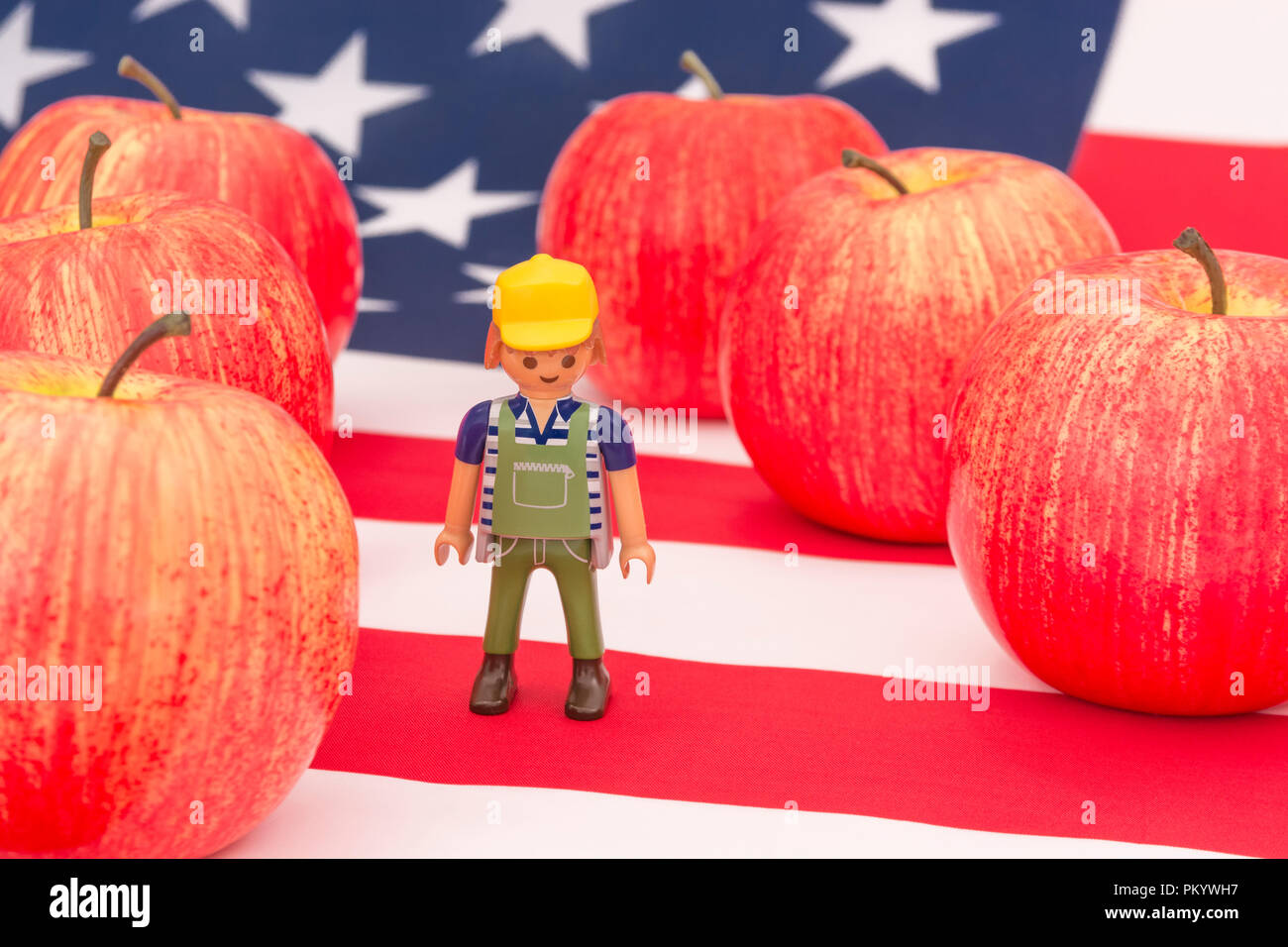 Red apples + US American flag / Stars and Stripes - metaphor US apple industry, Chinese trade tariffs on imports of American apples. Small toy farmer - Stock Image