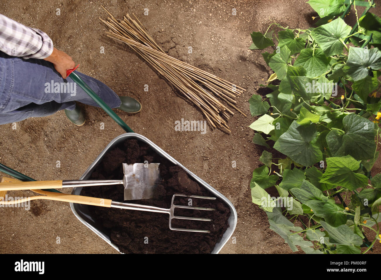 Fertilizer Vegetable Stock Photos & Fertilizer Vegetable Stock ...