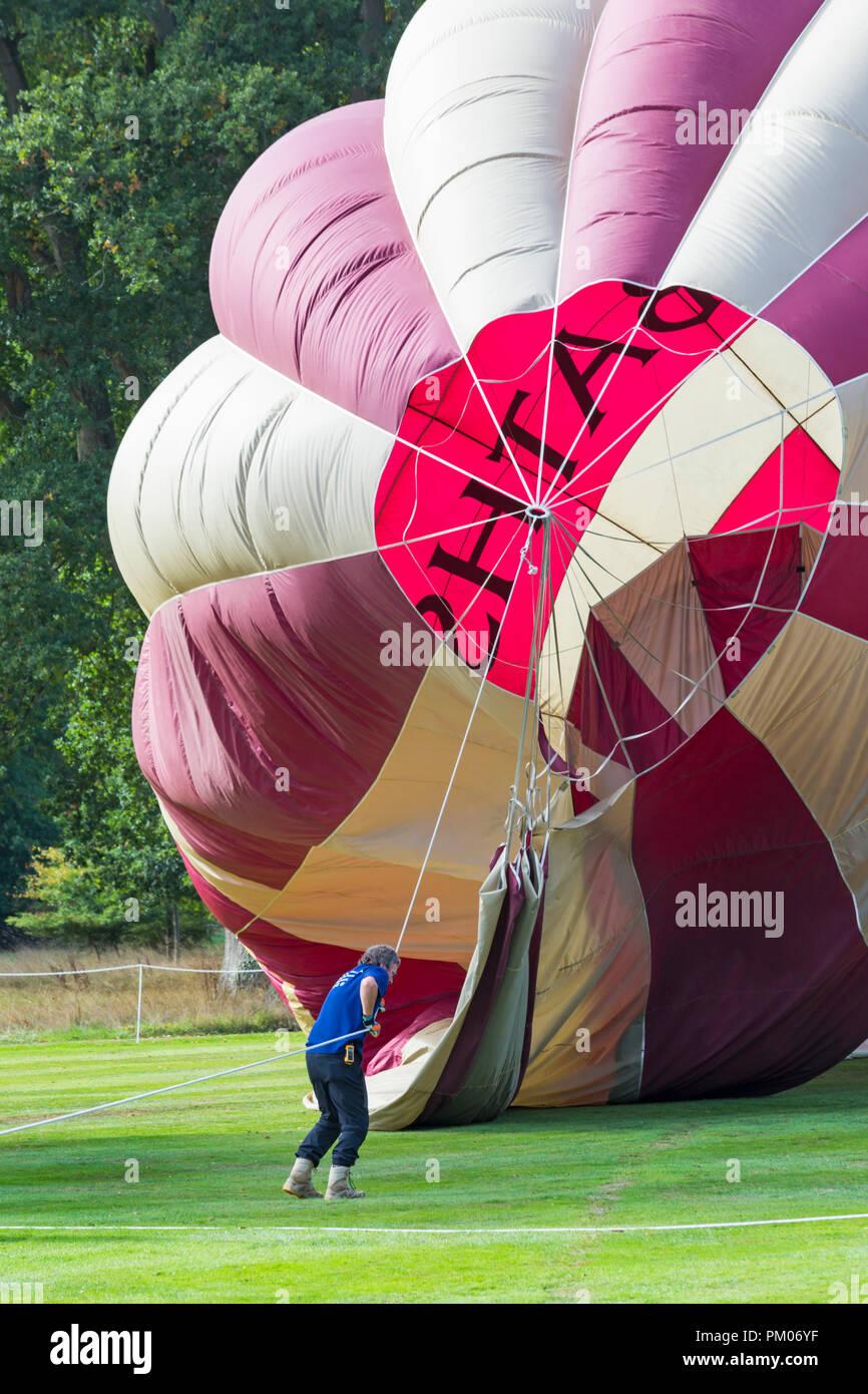 man pulling on rope, preparing hot air balloon at Longleat Sky Safari, Wiltshire, UK in September - Stock Image