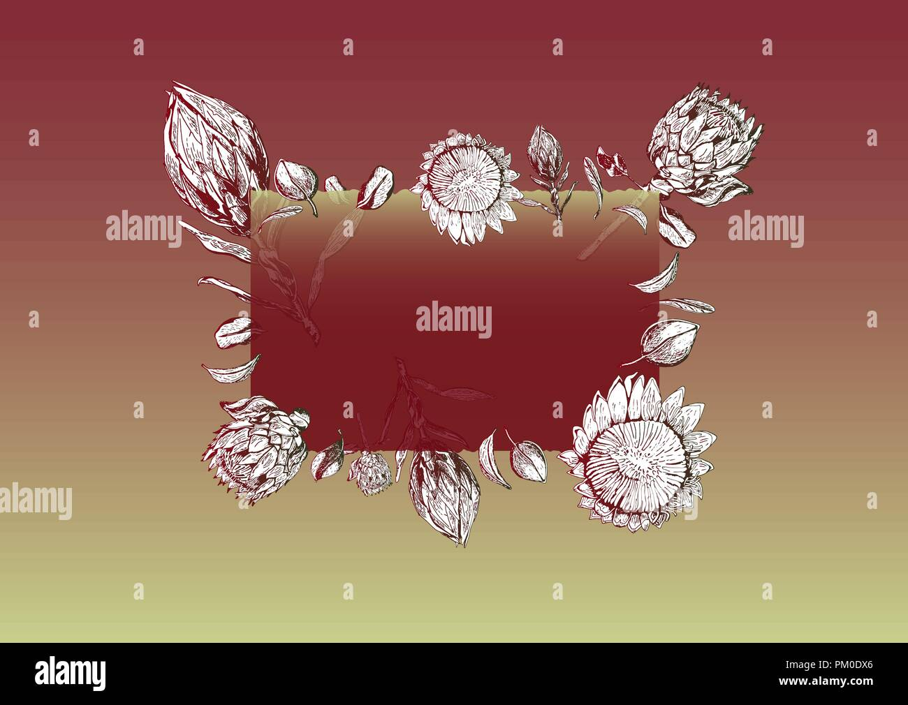 South Africa Stock Vector Images Alamy