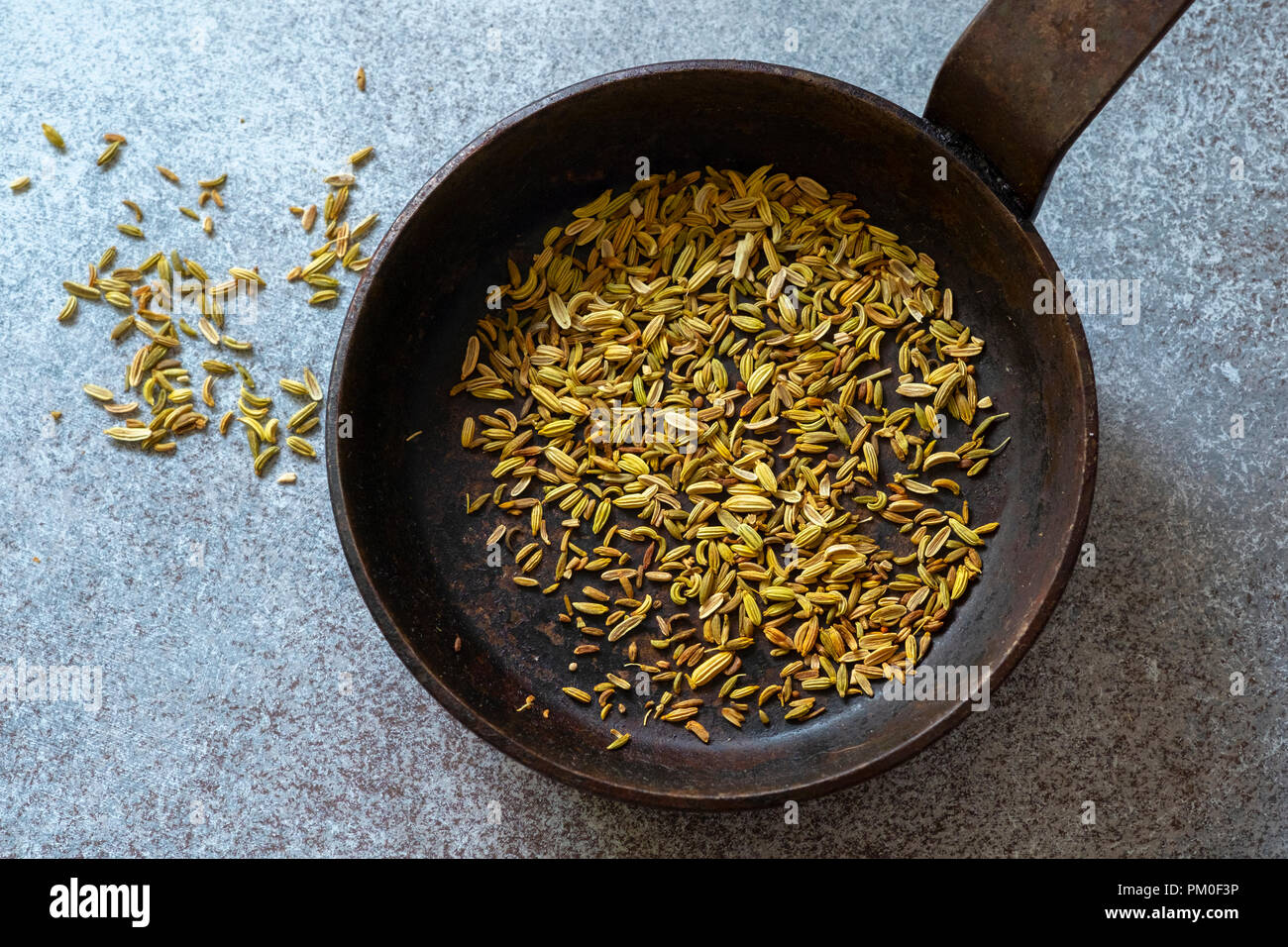 Toasted Fennel Seeds - Stock Image