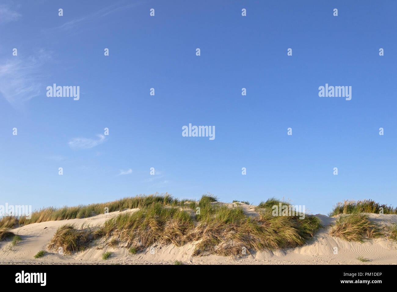 sand dunes, St. Peter-Ording, Schleswig-Holstein, Germany - Stock Image