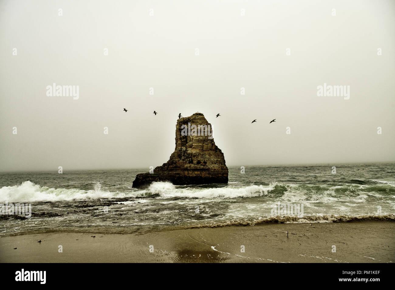 Davenport Beach, California - Stock Image
