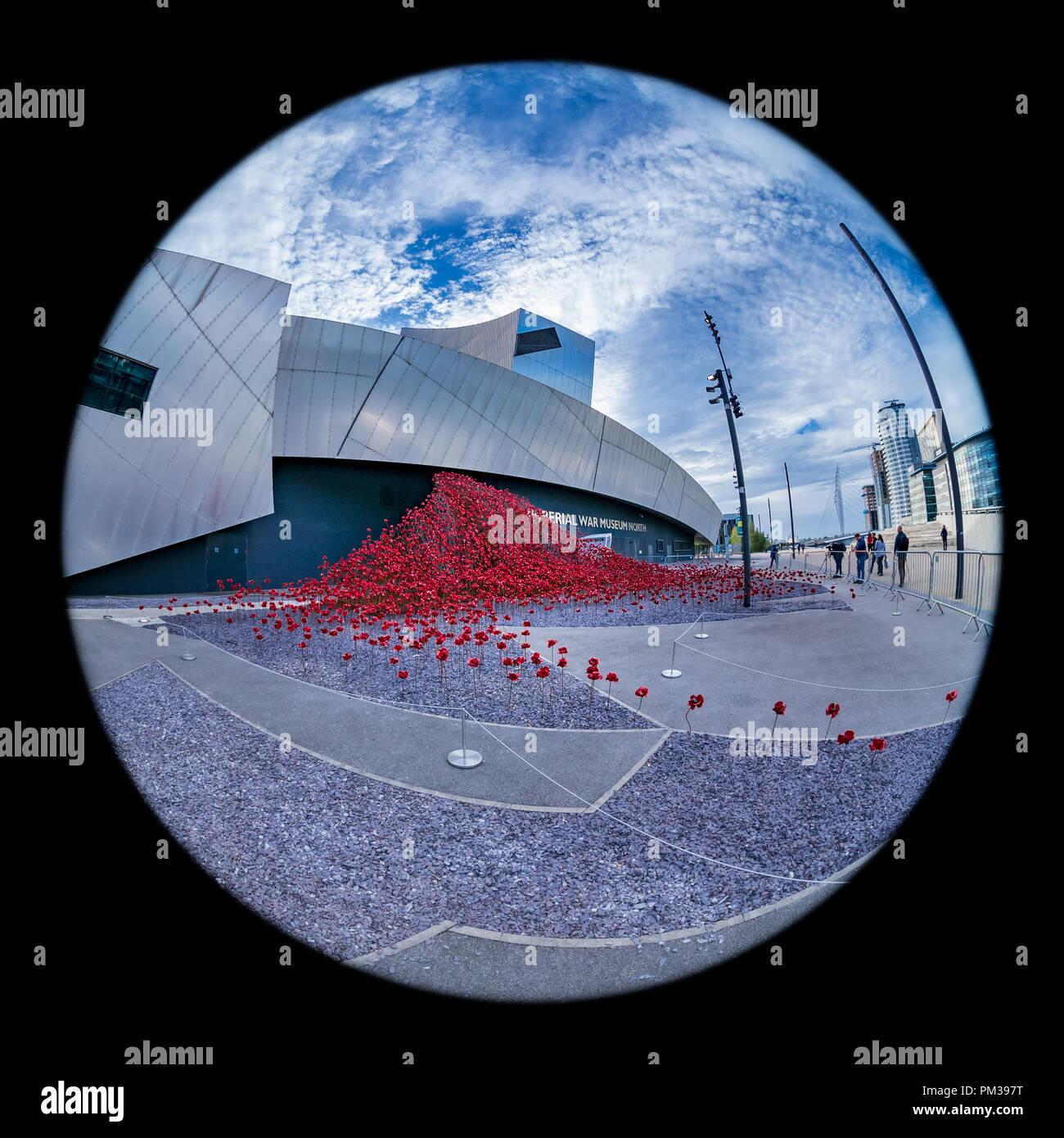 Ceramic Poppies at the Imperial War Museum North, Salford Quays, Manchester - Stock Image