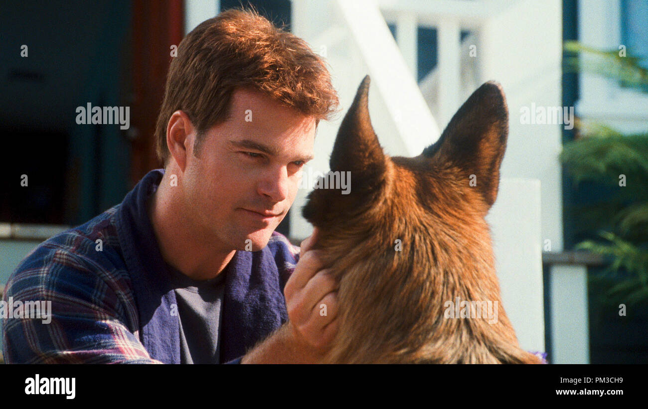 """(L-r) CHRIS O'DONNELL as Shane and DIGGS, voiced by JAMES MARSDEN in Warner Bros. Pictures' and Village Roadshow Pictures' comedy """"CATS & DOGS: THE REVENGE OF KITTY GALORE,"""" a Warner Bros. Pictures release. - Stock Image"""