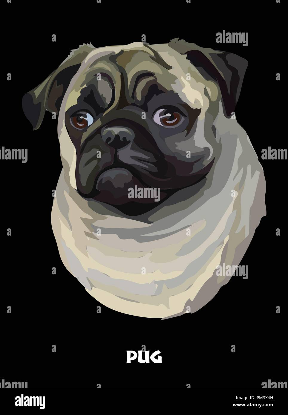 0f80914f37d8 Colored portrait of Pug isolated vector illustration on black background -  Stock Image