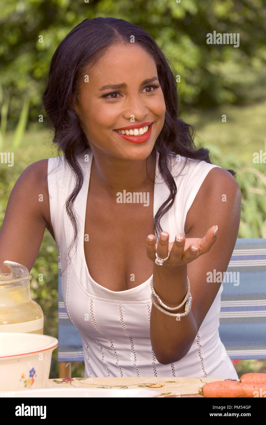 Welcome Home Roscoe Jenkins Joy Bryant C 2008 Universal Pictures