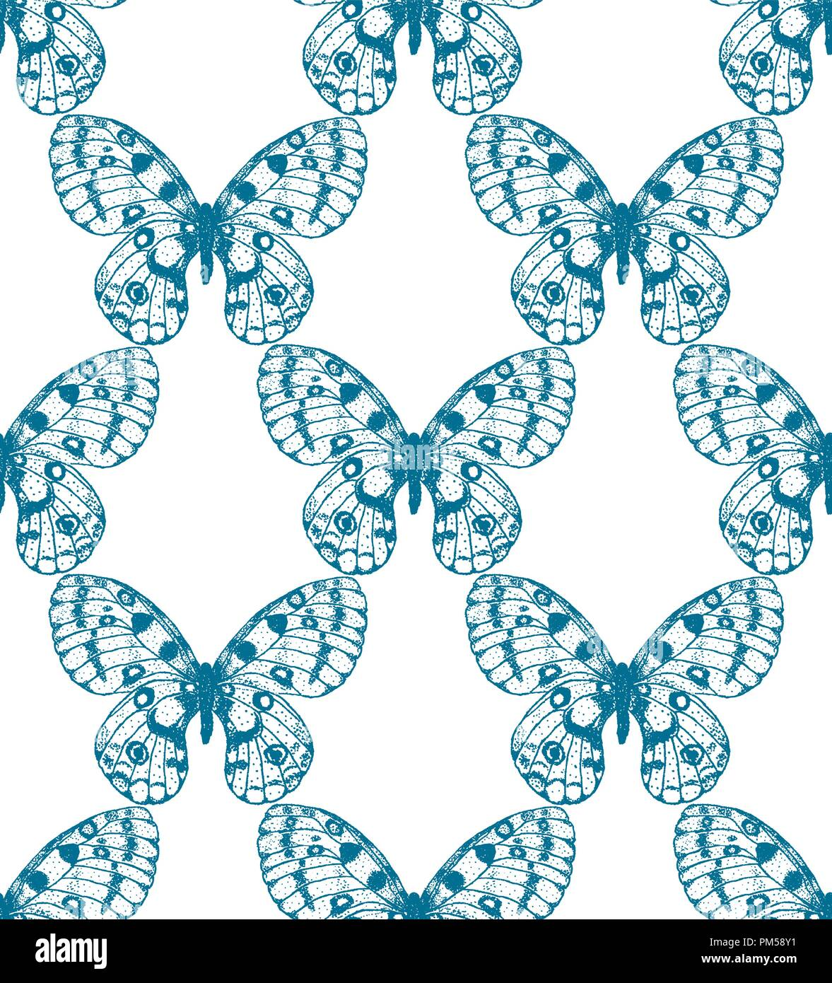 Vector seamless pattern of blue hand drawn butterfly on white background. Parnassius apollo background - Stock Vector