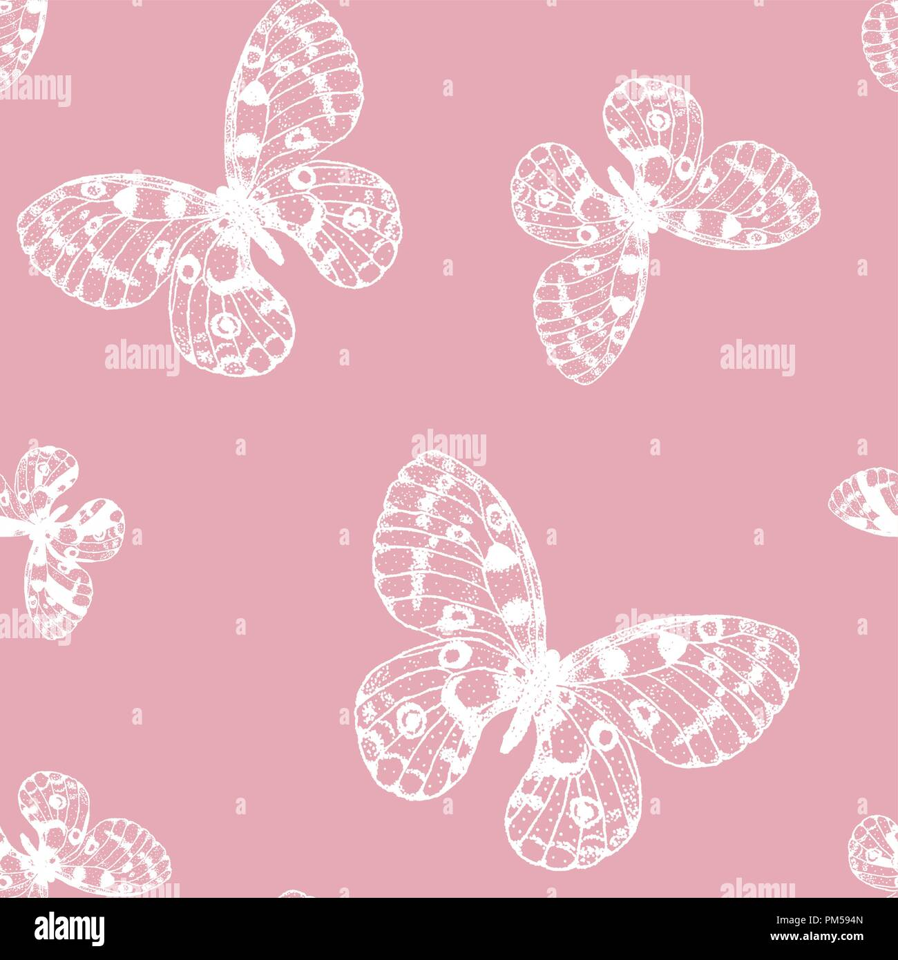 Vector seamless pattern of white hand drawn butterfly on pink background. Parnassius apollo background - Stock Vector